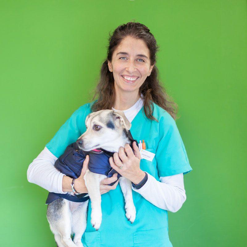 veterinaria-sonrie-perro